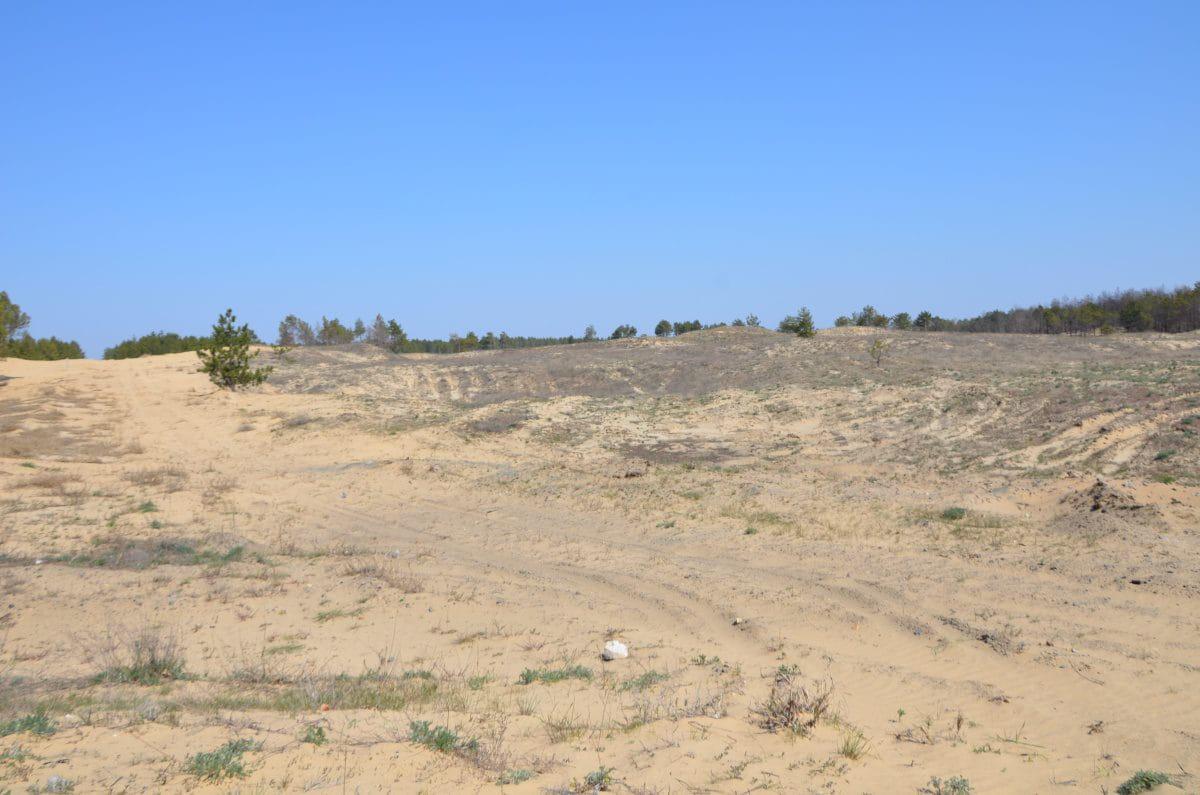 Олешки пам'ятки Природні пам'ятки - Олешківські піски