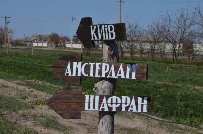 Каховка достопримечательности Развлечения - Парад тюльпанов в селе  Любимовка