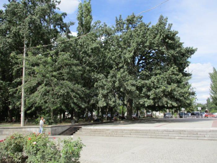 Памятники Херсон достопримечательности - Памятник первым корабелам